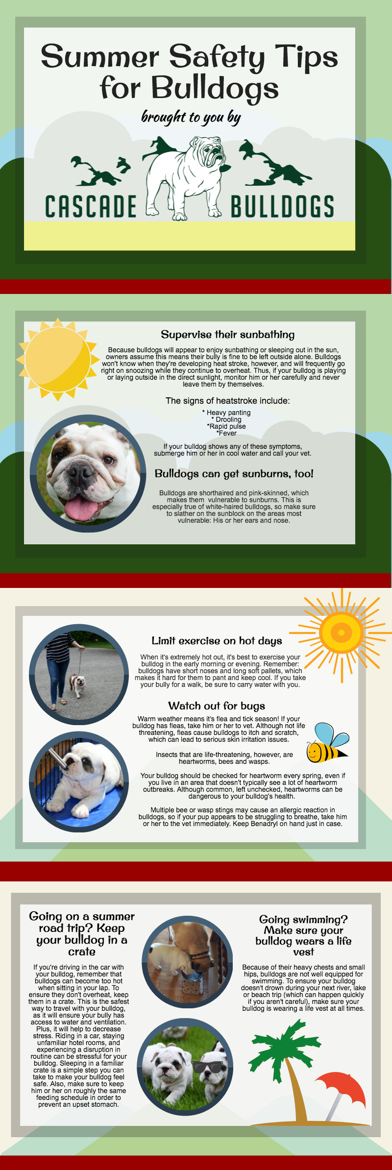 Tips for caring for your bulldog in the summer