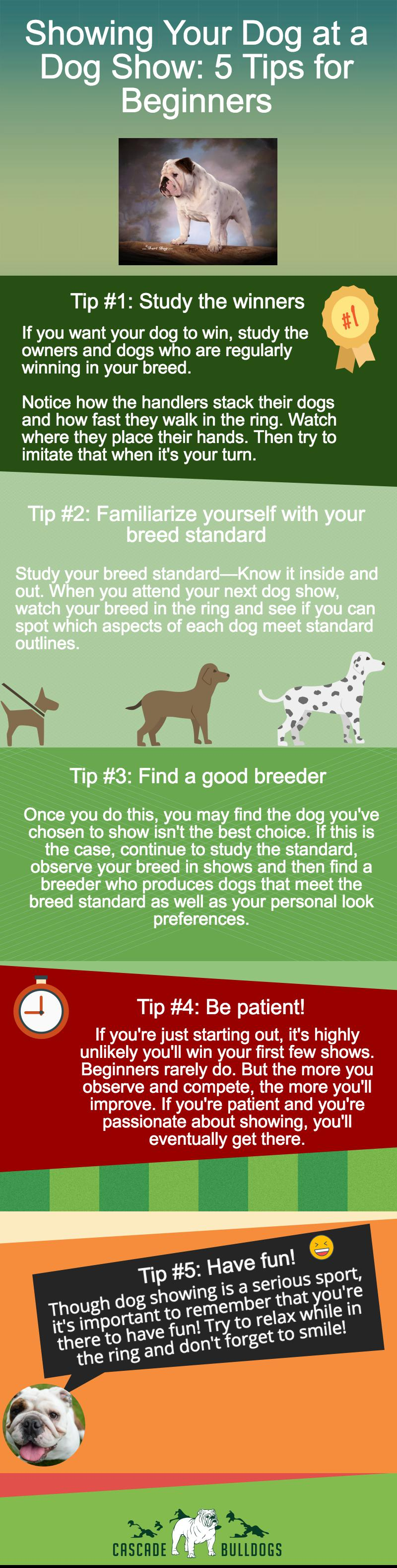 5 Dog Show Tips for Beginners