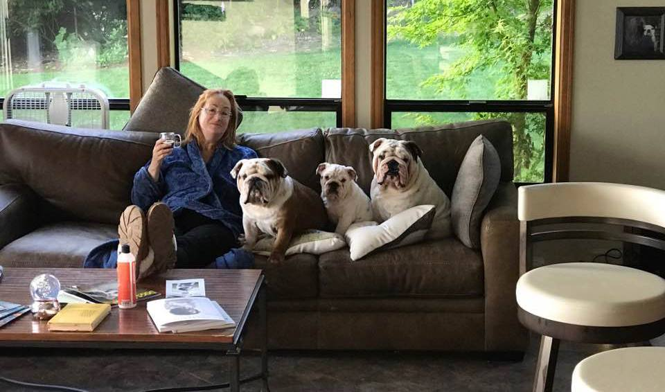 bulldogs couch potatoes